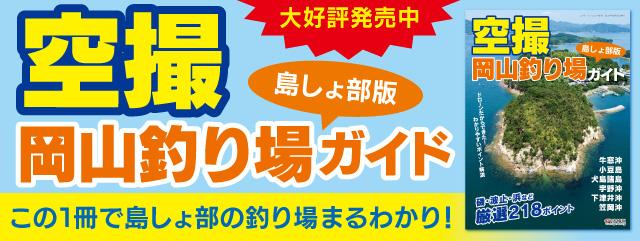 空撮 岡山釣り場ガイド 島しょ部版